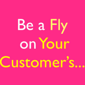 If You Were a Fly on Your Customer's Wall…